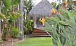 Looking to Palapa Spa